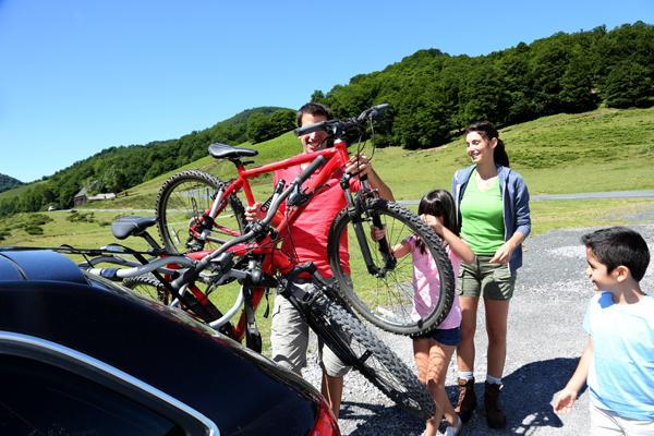 Summer bike carrying