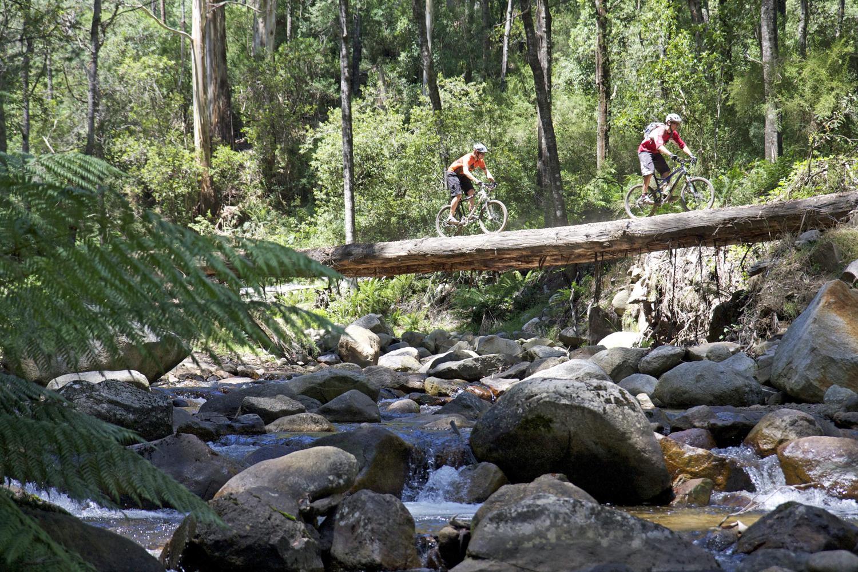 Australia S Top 50 Bike Riding Experiences Rideon