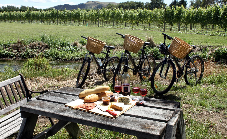 Picnic n bike