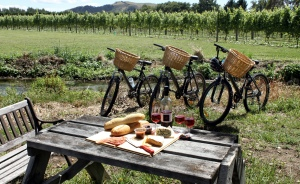 bike hire picnic
